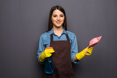 Young housewife cleaning with detergents in hands on grey backgroung Royalty Free Stock Photos