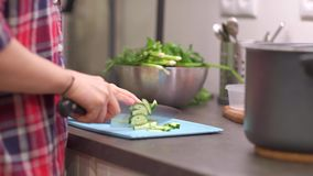Young housewife cuts cucumber on plastic board. Young woman housewife cuts cucumber on a blue plastic cutting board. Preparing food ingredients on a stone stock video