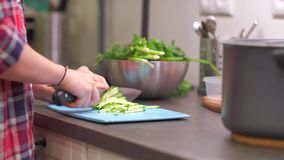 Young housewife slices cucumbers on plastic board. Young woman housewife slices cucumbers on a blue plastic cutting board. Preparing food ingredients on a stone stock video