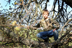 Young Hunter Hiding. A camouflaged preteen boy hiding in a tree while hunting. Shallow depth of field Royalty Free Stock Photography