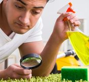 Young husband man cleaning floor at home. The young husband man cleaning floor at home royalty free stock photos