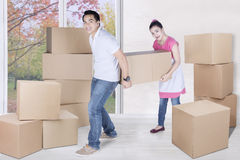 Young husband and wife carry box together Royalty Free Stock Image