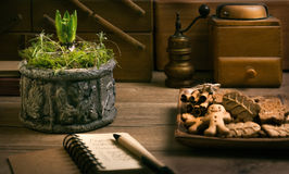 Young hyacinth bulb on kitchen table with plate of cookies Royalty Free Stock Photo