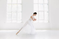 Young and incredibly beautiful ballerina is posing and dancing in a white studio. Full of light Stock Photos