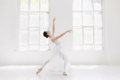 Young and incredibly beautiful ballerina is posing and dancing in a white studio Stock Photos