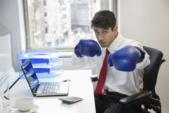 Young Indian businessman wearing boxing gloves at office desk Royalty Free Stock Images