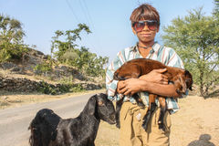 Young Indian Shepherd Stock Image