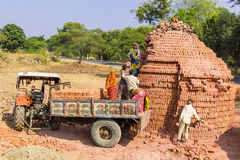 Young Indians load bricks on a tractor. Royalty Free Stock Photography