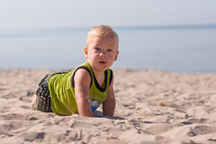 Young infant crawling royalty free stock image