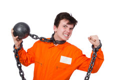 Young inmate with chains isolated Royalty Free Stock Image