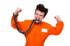 Young inmate with chains isolated Royalty Free Stock Photography