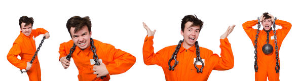 The young inmate with chains isolated on the white Stock Photo
