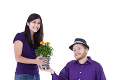 Young interracial couple with potted marigold plant, studio shot Royalty Free Stock Photo