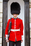 Young Irish Guard at the Tower of London Stock Image