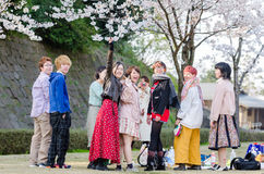 Young Japanese people looking at camera on their relax time at Cherry blossom garden Stock Photos