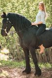 Brunette woman riding dark horse at summer green forest. Young jockey girl riding a brown horse in the summer at sunset Royalty Free Stock Photo