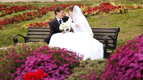 Young just married couple Stock Photos