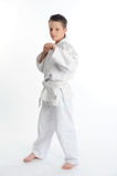 Young karate boy Stock Image