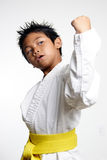 Young Karate Kid. Over white Royalty Free Stock Image