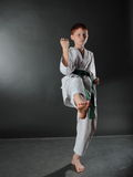Young Karate Man. Royalty Free Stock Images
