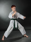 Young Karate Man. Royalty Free Stock Photography