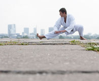 Free Young Karate Master Royalty Free Stock Photo - 28315755