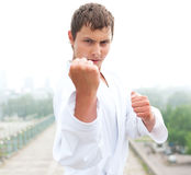 Young karate master Stock Image