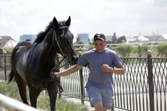 Young Kazakh man is taking a black horse after racing. Young Kazakh Asian man is tating a beautiful tired looking black horse from stadium after race royalty free stock images