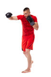Young kickbox fighter on white Royalty Free Stock Photography