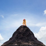 Young kid chick baby standing on top peak of mountain abstract f Royalty Free Stock Photography