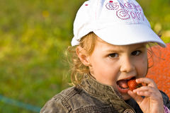 Young kid eating berry. Strawberry eating child in the garden Stock Image