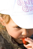 Young kid eating fruit in secret Stock Photography