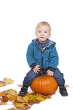 Young kid sitting on a pumpkin Royalty Free Stock Image
