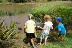 Young kids feeding ducks in pond Stock Photo