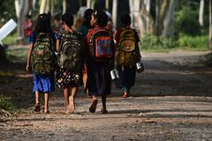 Young kids are going to school in Bangladesh unique photo. Bangladeshi primary education students are walking together to go to school in the village isolated stock photos