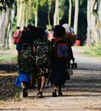 Young kids are going to school in Bangladesh unique photo. Bangladeshi primary education students are walking together to go to school in the village isolated royalty free stock photos