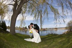 Young kissing couple on their wedding day. A young couple shares a kiss on their wedding day Royalty Free Stock Image