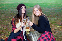 Young ladies having picnic in a park. Royalty Free Stock Images