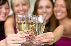 Young ladies toasting with flutes of champagne. Young ladies toasting a special occasion together with flutes of champagne clinking glasses for the camera, close Royalty Free Stock Photos