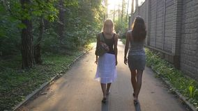 Young ladies walking in the park and chatting. Two girlfriends walking in the park along the alley at sunset and chatting, slow motion stock video