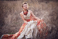 Young lady in a beautiful dress Royalty Free Stock Images