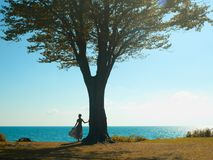 Young lady with a beautiful tree. Beautiful young lady with a big tree on the beach Stock Photos