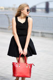 Young lady in black skirt, sleeveless shirt and fashion bag posi Stock Image