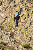 Young lady climbing the rocks Royalty Free Stock Photos