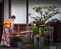 Young lady dressed up in colorful kimono takes water from a fountain at Kiyomizu-dera temple in Kyoto. Kyoto, Japan -November 2, 2018: Young lady dressed up in stock photography