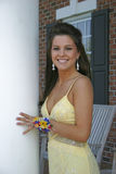 Young lady in evening gown Stock Images