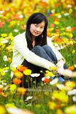 Young lady in  flower fields Royalty Free Stock Photography