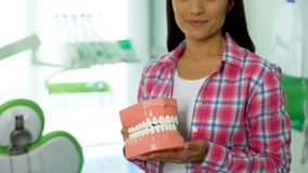 Young lady holding 3d model of jaw, concept of dental care and oral hygiene. Stock photo royalty free stock photo
