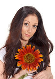 Young lady holding sunflower near face portrait Stock Image