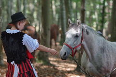 Young lady and a horse Royalty Free Stock Image